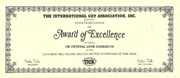 Award of excellence2